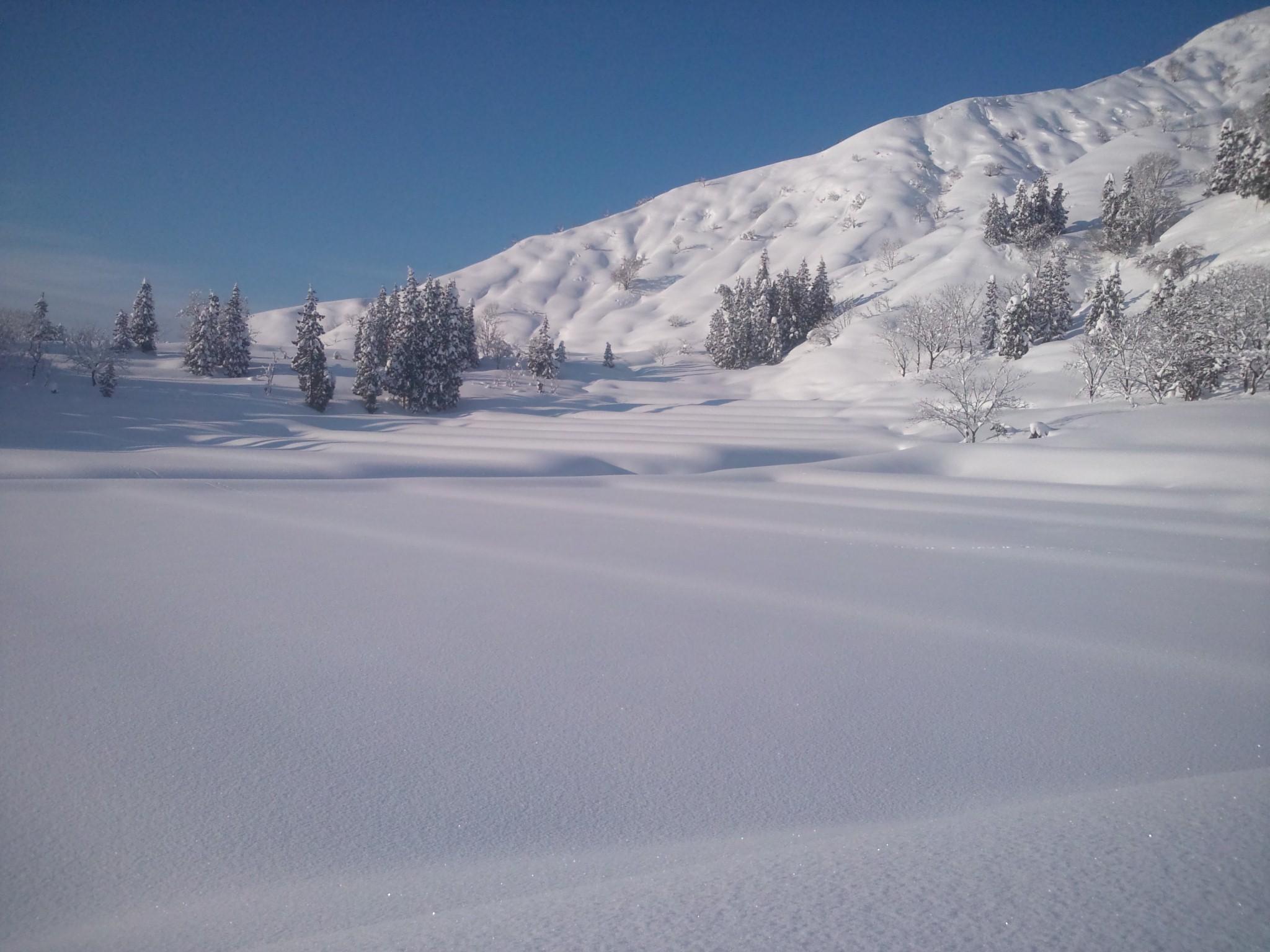 新潟県魚沼市大倉の雪2